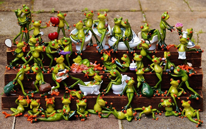 frogs-1371297_1280